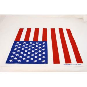 Wilsons of Sharrow American Flag Handkerchief